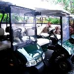 buggy to get around the resort