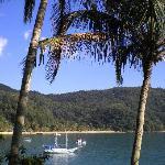 View of the beach from Tapera das Palmas