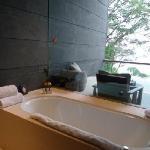 bathtub wth a view