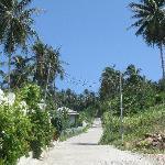 la chemin qui mène à Pema