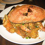 spicy flavored sauteed dungeness crab