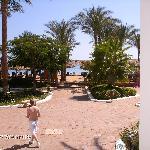 hotel views with beach