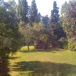 Garden view from our room
