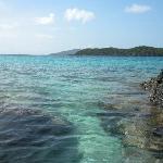 Coki Beach Coral