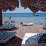 Shark's Bay Beach ภาพถ่าย