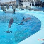 Port of Nagoya - Public Aquarium