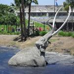 The Tar Pits Los Angeles