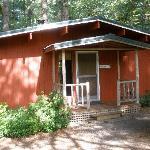 Cabin 8, Alder