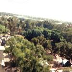 The view from the top of Montezuma's revenge sometime in the late '80s.  This artifact was found