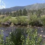 Truckee River, Reno Nevada