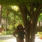 Chillin by the round tree in the D.R