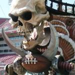 Raymond James Stadium ภาพถ่าย