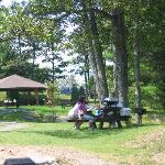 picnic area with charcoal grills for your use
