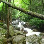 Rockport Waterfall at Lehigh Gorge Bike Trail