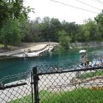 This is part of a long Spring called Barton Spring. In a park called Zilker Park. The spring is