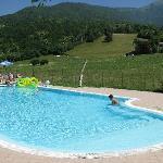 piscina e prato