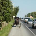 Buggy Ride in PA Amish Country