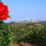 Castello Monteriggioni from a monastery vineyard
