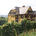 L'hôtel entouré de vignes