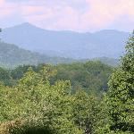 View from the top of the Mountain on property.