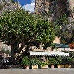 Photo de Restaurant La Treille Muscate