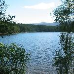 Loch An Eilein, Rothiemurchus Estate