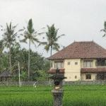 The villa from the surrounding rice fields