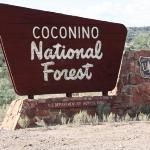 Coconino National Forest, Sedona, AZ