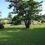 Cottage garden view 2