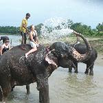 Don't miss bathing with the elephants!