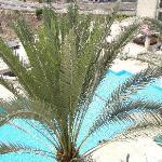 vue de la piscine depuis la chambre