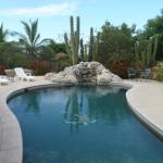 Pool and Cardon cactus