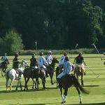 Polo Match at River Ground, Cowdray