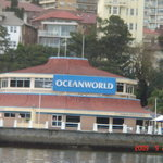 Oceanworld Building from the Warf