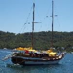Typical turkeys boat anchor at Honeymoon Beach