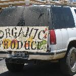 Organic Produce stand in Todos Santos