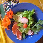 Organic Mixed Greens with Grapefruit & Nasturtiums from Deborah's Garden