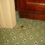 you will see that all over the carpets