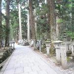 奥の院参道