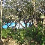 la piscine vue du sous bois