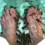 My feet relaxing while the fish ar at work