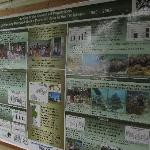 Waitabu Marine Conservation Poster