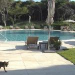 Photo de Is Arenas Resort