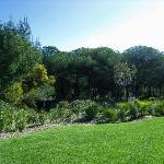 immersi nel verde e negli aromi della macchia mediterranea