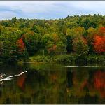 Canoeing Streeter Pond