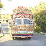 the `Bindi bus`