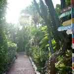 Pier House garden pathway