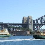 Ferries near Circular Quay