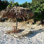 the beach chairs