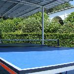 Table tennis in the shade at the Rodo Cypria